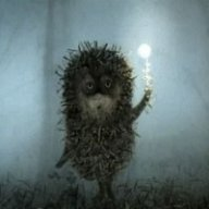 Hedgehog-of-Fog