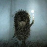 Hedgehog-of-Fog